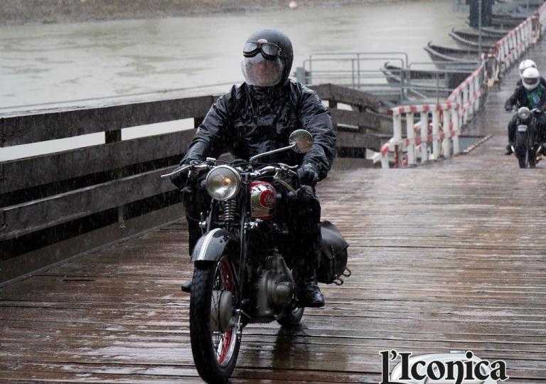 liconica-moto-sertum