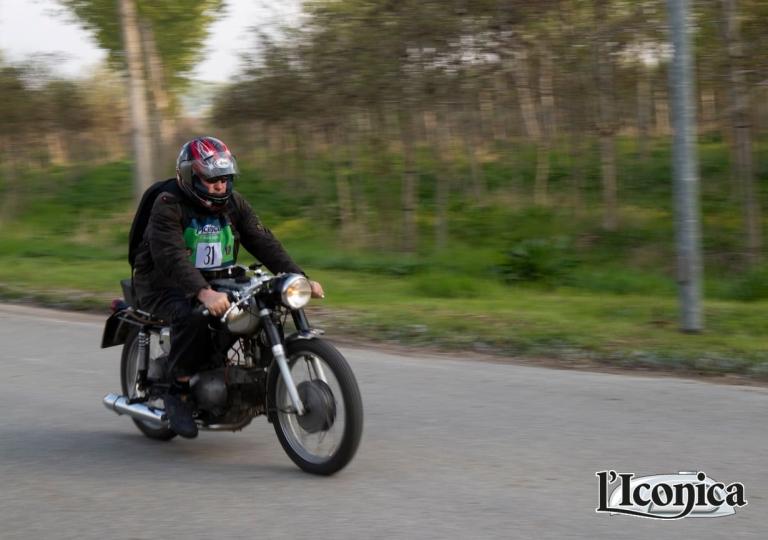 liconica-fernando-motobi